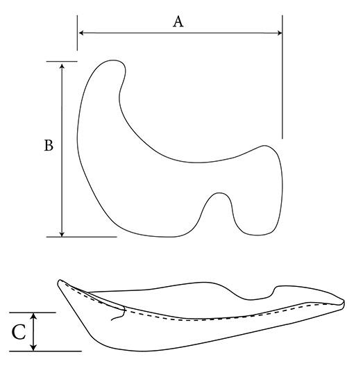 Extended Orbital Rim diagram