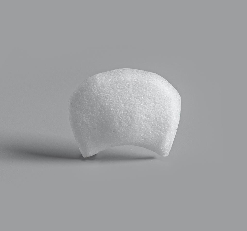 4462-Capocelli Plate su-por surgical implants