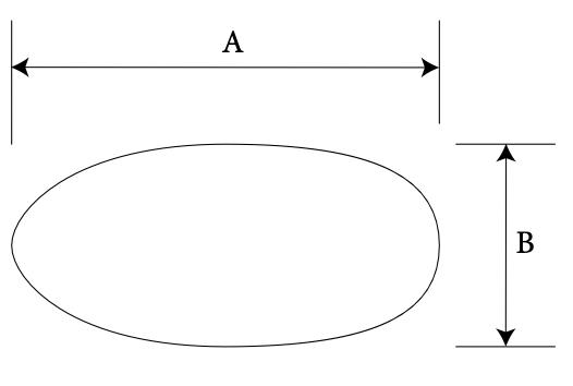 Nasal Batten diagram