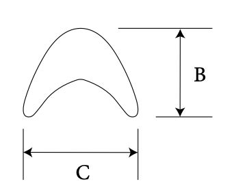 Nasal Radix diagram 2