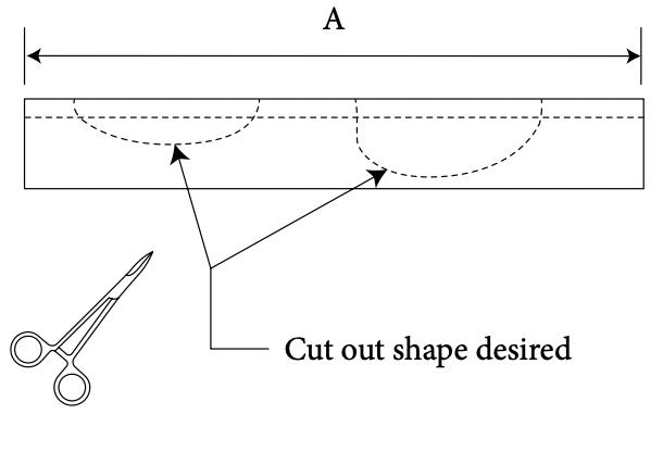 Nasal Arch Diagram