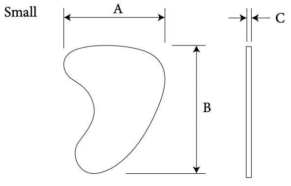 mastoid diagram 2