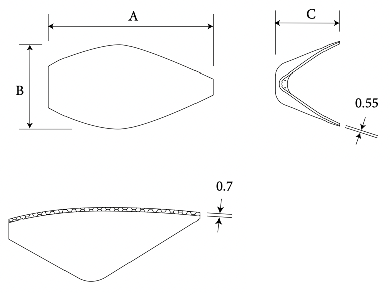 nasal dorsal shell diagram